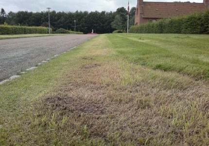 Græsrabatten mellem det høje græs og vejkassen holdes kortklippet. Søndre kgd